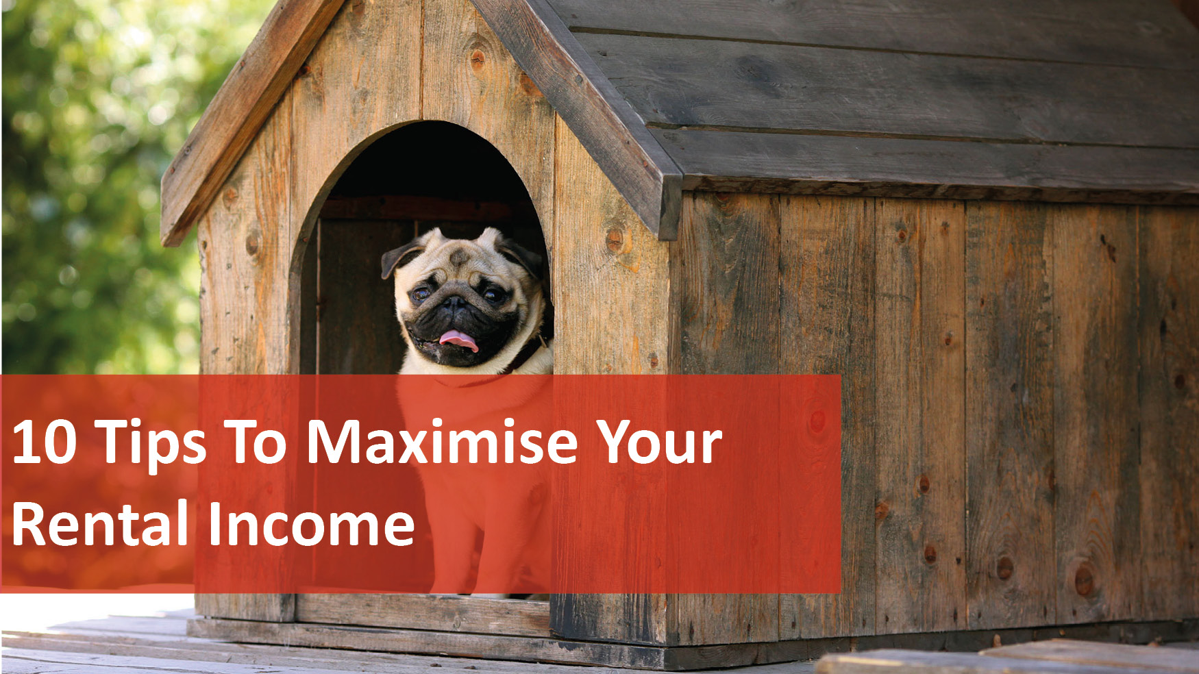 We Love Rentals 10 Tips To Maximise Your Rental Income