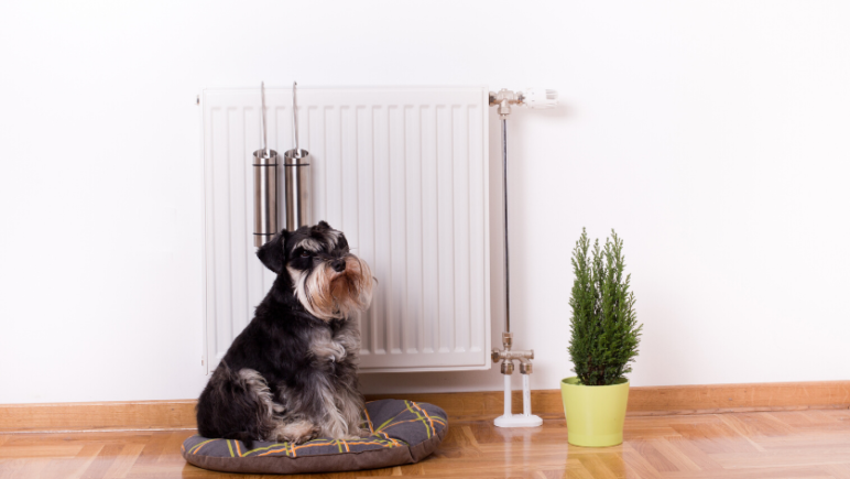 prepare your perth rental 3. Service and CO2 Test Your Inbuilt Gas Heater