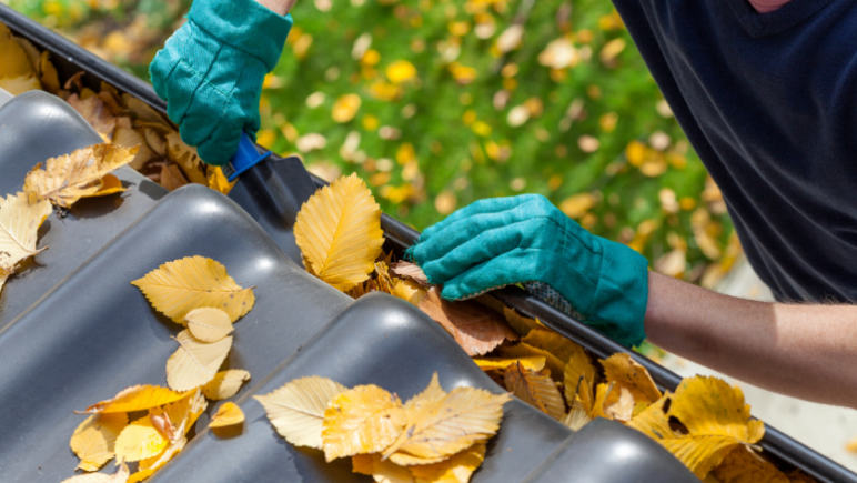 5 winter tasks to prepare your perth rental clean your gutters